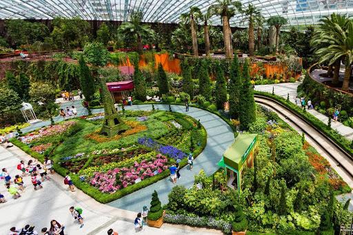Khu rừng nhiệt đới nhân tạo tại Singapore