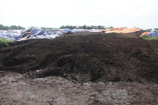 Bùn thải công nghiệp sau thu gom và xử lý